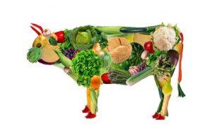 Vejetaryen Beslenen Anneler ve Vejetaryen Beslenmede Vitaminlerin Önemi